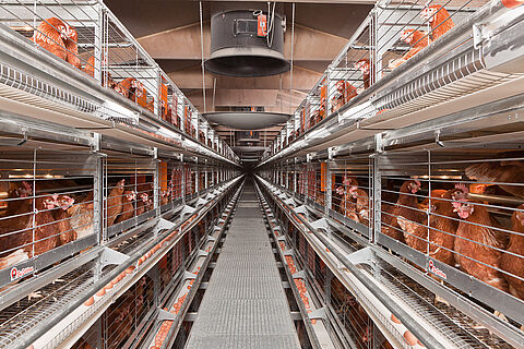Eurovent 2240-EU zenginleştirilmiş kafes sistemi